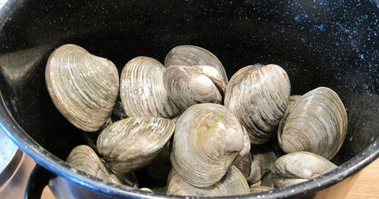 The Jersey Shore Pot O' Gold