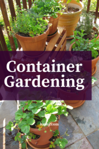 Small container gardening offers those with limited space ability to grow a variety of plants.