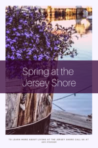 Everything reawakens at the Jersey Shore each Spring.  Come experience the beauty of the coast.